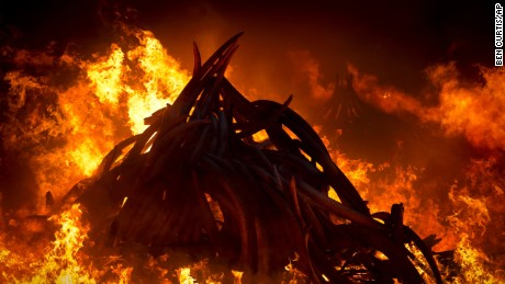 Pyres of ivory burn into the night in Nairobi National Park, Kenya Saturday, April 30, 2016. Kenya's president Saturday set fire to 105 tons of elephant ivory and more than 1 ton of rhino horn, believed to be the largest stockpile ever destroyed, in a dramatic statement against the trade in ivory and products from endangered species. (AP Photo/Ben Curtis)