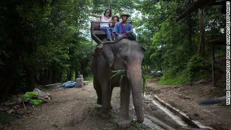 MAE SA, THAILAND - JULY 25:  Chinese tourists ride elephants at the Mae Sa Elephant Camp on July 25, 2014 in Mae Sa, Thailand. Thailand's government announced recently that visa fees will be waived for tourists from China and Taiwan between August 1 and October 31 in a bid to boost tourism affected by recent political turmoil.  (Photo by Taylor Weidman/Getty Images)