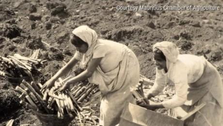 mauritius hindu festival inside africa b_00022918