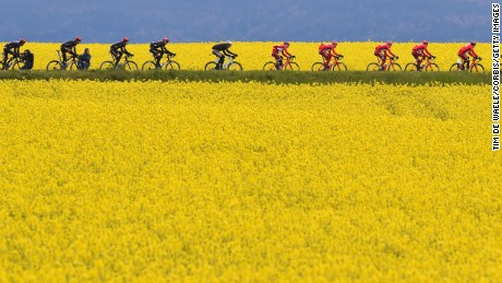 GENEVA, SWITZERLAND - MAY 01: The peloton cruising trough a yellow flower corn field during stage 5 of the Tour de Romandie on May 1, 2016 in Geneva, Switzerland. (Photo by Tim de Waele/Corbis via Getty Images)