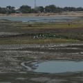 GettyImages-526701860India drought