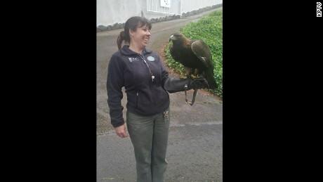 eagle found alive
