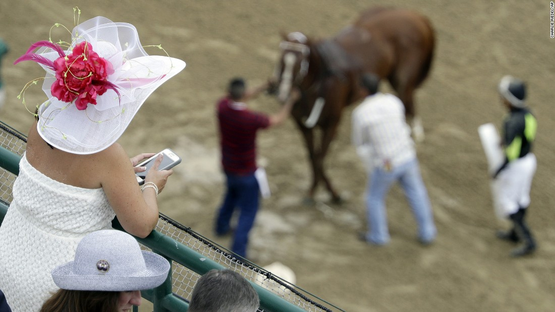 A fan watches as trainers prepare a horse for an early race.