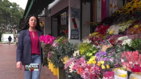 cnnee promo web fuerza en movimiento colombia flores frias generico_00002510