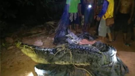 giant crocodile found in thailand orig_00000907.jpg