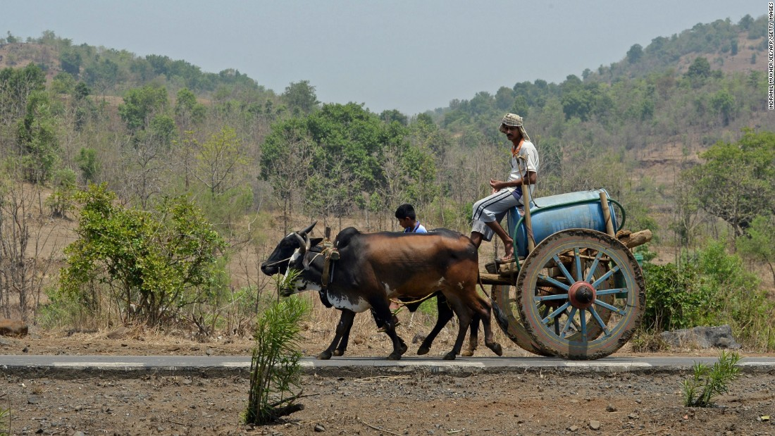 A villager transports water on his cart on May 13.