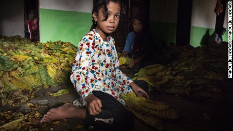 Children sort and roll tobacco with their mothers in their homes in Grow'm, near Sampang