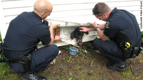 Overland Park police rescue a dog from dryer vent hole