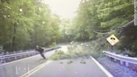 police officer hit falling tree dashcam_00003617.jpg