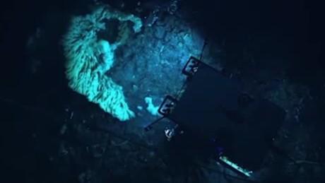 massive deep sea sponge discovery emarticke orig_00003405.jpg