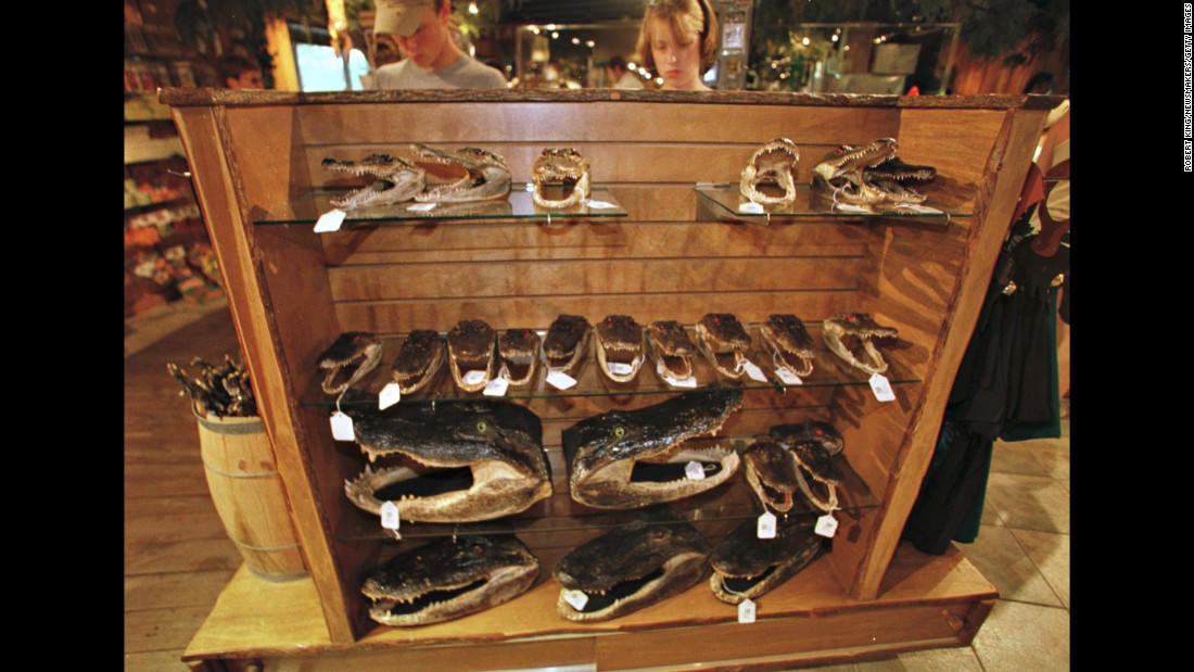 Alligator heads are displayed at the Gatorland gift shop in 2000.
