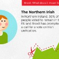 Brexit personas cards - Northern irish 2