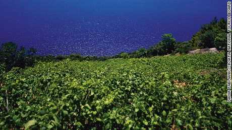 Rural Croatia is dotted by about 1,000 wineries.