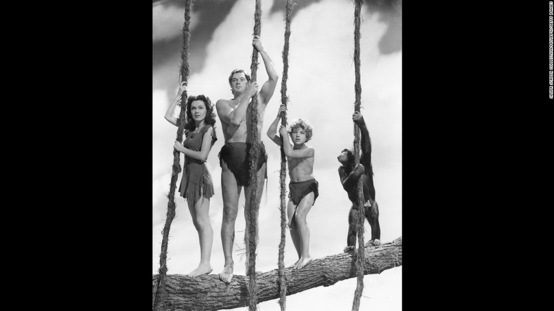 """Here he is, the classic Hollywod Tarzan: Olympic swimming champion-turned-actor Johnny Weissmuller in 1941's """"Tarzan's Secret Treasure,"""" also starring Maureen O'Sullivan as Jane and Johnny Sheffield as Boy. Weissmuller appeared in a dozen Tarzan films, first for MGM, then RKO. He <a href=""""https://www.youtube.com/watch?v=MwHWbsvgQUE"""" target=""""_blank"""">owns the classic Tarzan yell.</a>"""