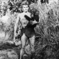 07 Tarzan Opinion