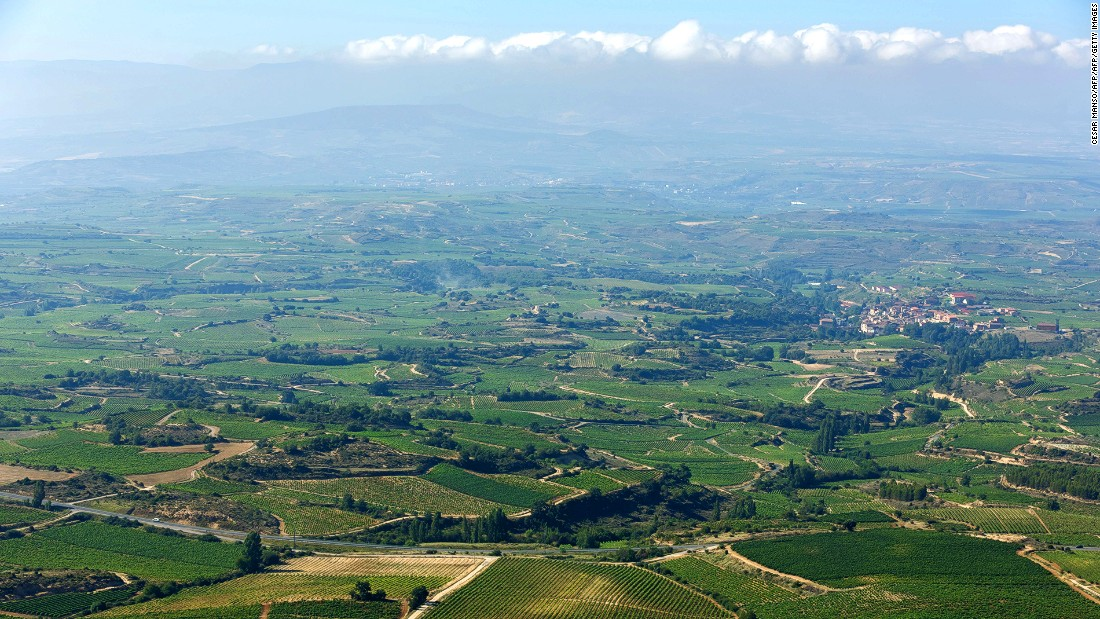 Tempranillo, Grenache, Graciano and Mazuelo are some of the popular grapes from Spain's La Rioja region. A wine tour in La Rioja is usually paired with delicious tapas including spicy chorizo and lomo embuchado.