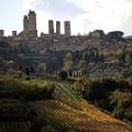 Tuscany Vernaccia road wine of San Gimignano3