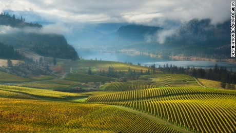 View of vineyards and Vaseux Lake from Blue Mountain Winery in the Okanagan Valley Adam Gibbs