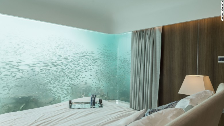 The underwater windows