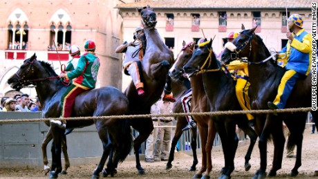 'The toughest horse race in the world'