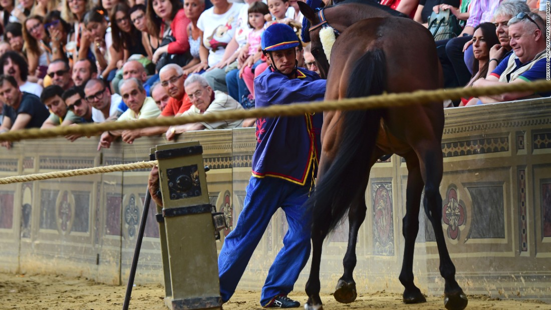 Jockeys can use whips not only on their own horse, but also to disrupt a rival horse.