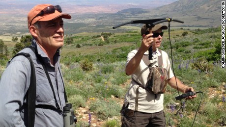GPS devices help researchers track the herd.