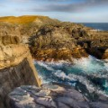 12 new unesco Mistaken Point