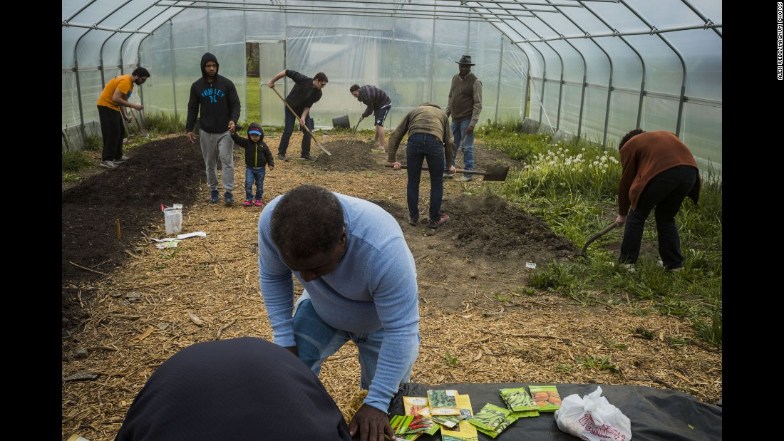 Case Western Reserve University students volunteer at Vel Scott's community garden. The city has one of the most prolific urban farming communities in the country.