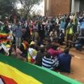 Zimbabwe protests crowd