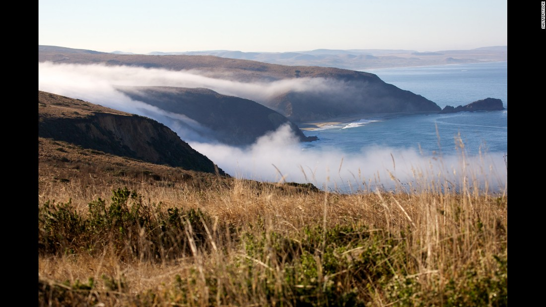 Nearby Point Reyes National Seashore boasts spectacular rocky headlands.  The park is crisscrossed with 150 miles of hiking trails and populated by more than 1,500 species of plants and animals.