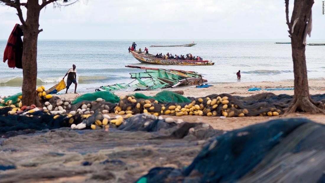 Artisanal fishing pirogues at the fishing port of Kafountine, Casamance.