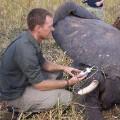 african parks paramedic checking vitals