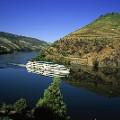 N Portugal T09AZH07Cruzeiro no rio Douro_Jose Manuel