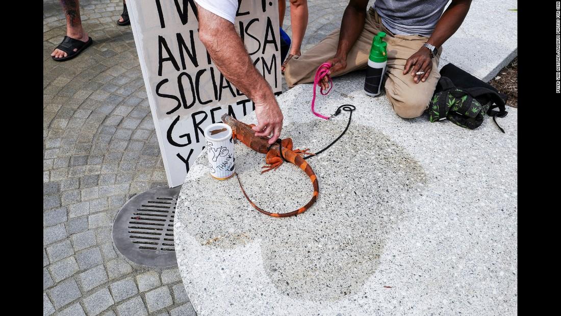 A lizard on a leash in Public Square.