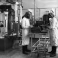 04 anthrax history