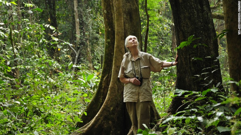 Jane Goodall's mission to save humans as well as chimps