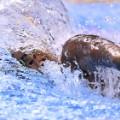 07 rio olympics 0809