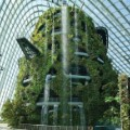 glasshouse gardens by the bay