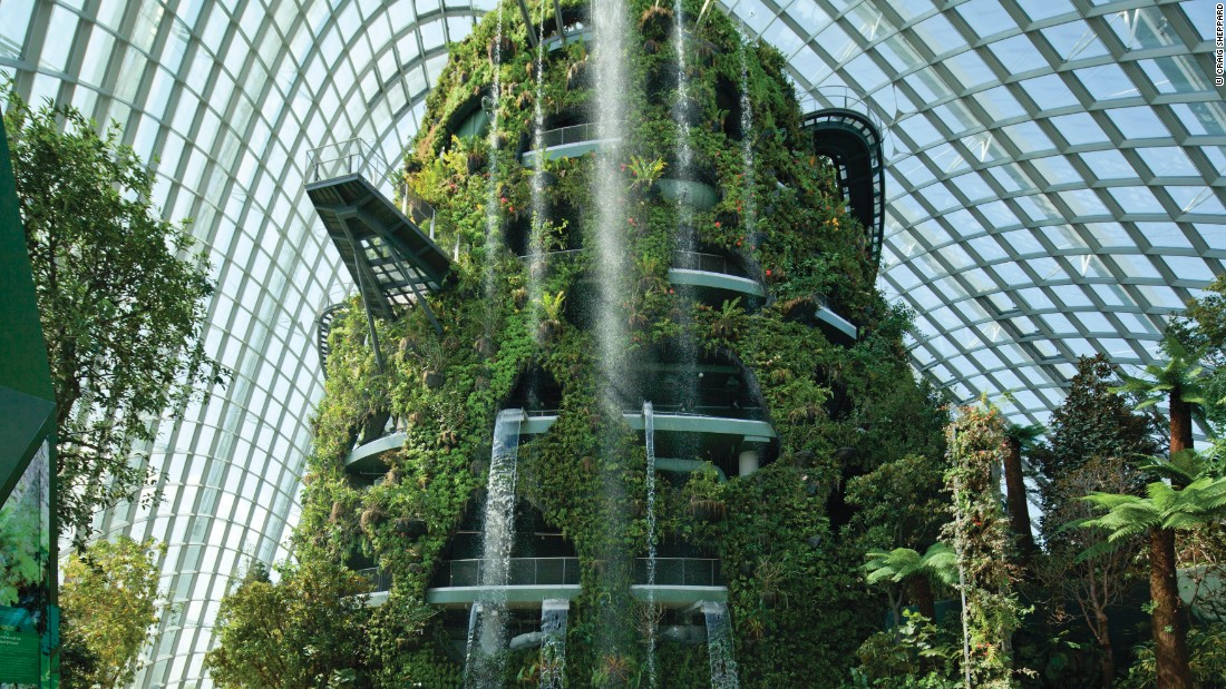 """""""You start to think of the plants as the clients, rather than some organization. You are trying to design something where the plants will flourish so you have to get everything right, particularly the amount of light, shade, temperature, humidity, etc. It requires a lot of research,"""" said Jim Eyre, a founding director of WilkinsonEyre."""