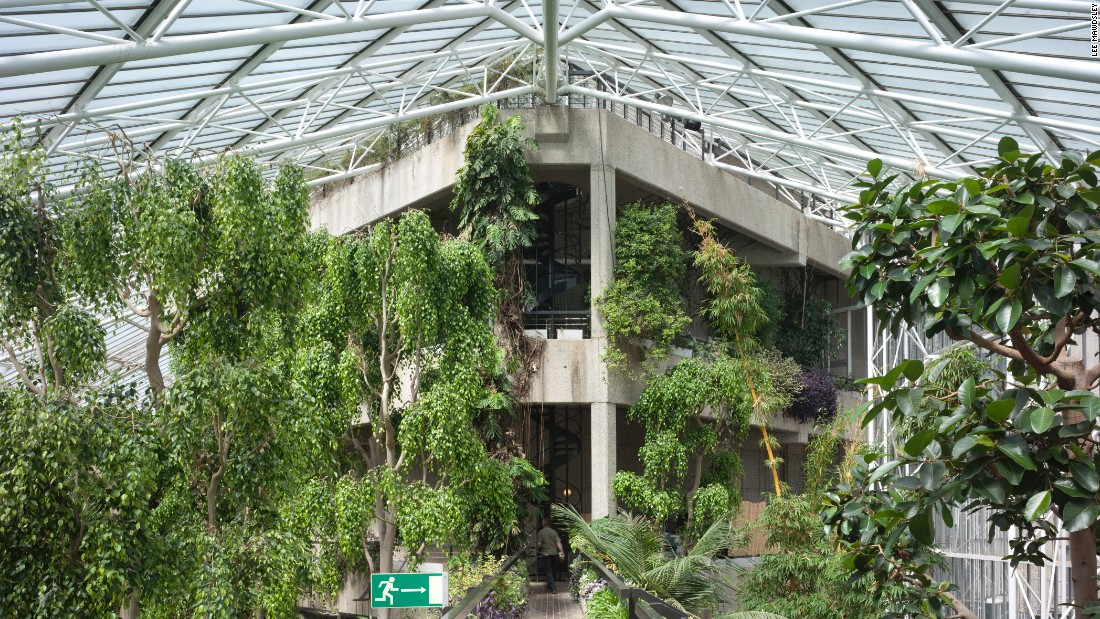 """The second biggest conservatory in London, the <a href=""""https://www.barbican.org.uk/"""" target=""""_blank"""">Barbican</a> Conservatory has experienced renewed popularity in recent years. Open to the public, it is often used as a wedding venue and for various fashion shoots for the likes of Paul Smith, Rita Ora, Jean Paul Gautier and Agent Provocateur."""