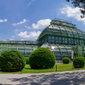 glasshouse palm house schonbrunn