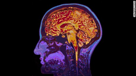 How language is processed by your brain