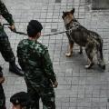 09 thailand bombings 0812