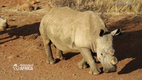 rhino poaching price horn marketplace africa spc_00033228