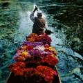 Steve McCurry photo shanghai