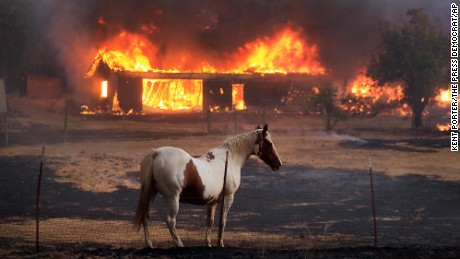 A house  burns in Lower Lake, Calif., is in ruins due to the Clayton fire Sunday, Aug. 14, 2016. (Kent Porter/The Press Democrat via AP)