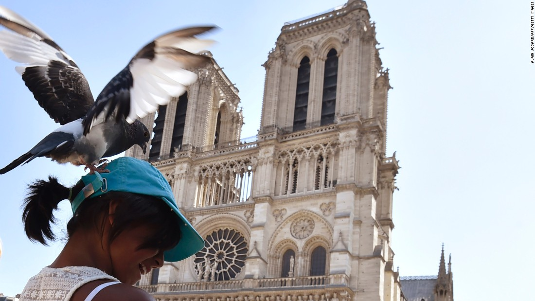 The French capital has endured a tough time recently, with visitor numbers falling sharply. Tourists who travel to Paris are still rewarded by the sights of one of the world's greatest cities -- including Notre Dame Cathedral. Less rewarding, perhaps, are encounters with local pigeons.