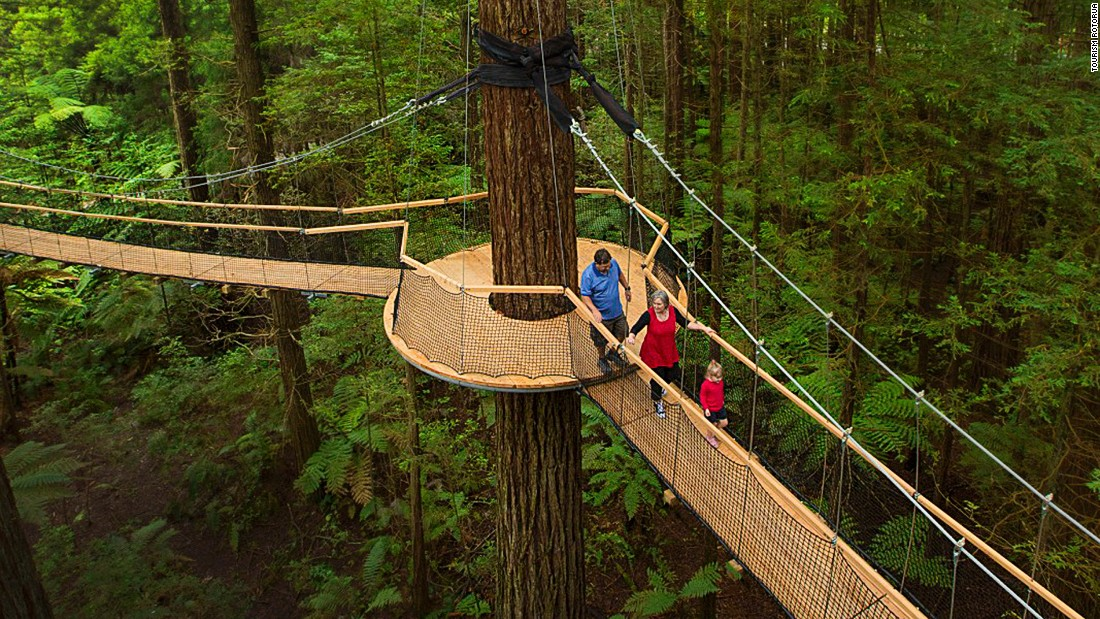 The Rotorua Treewalk has the world's longest suspended bridge course of its kind. The 30-minute ecological walk is a series of 21 suspension bridges that weave through the majestic 110-year-old Redwood trees.
