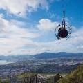 Rotorua9 Skyswing