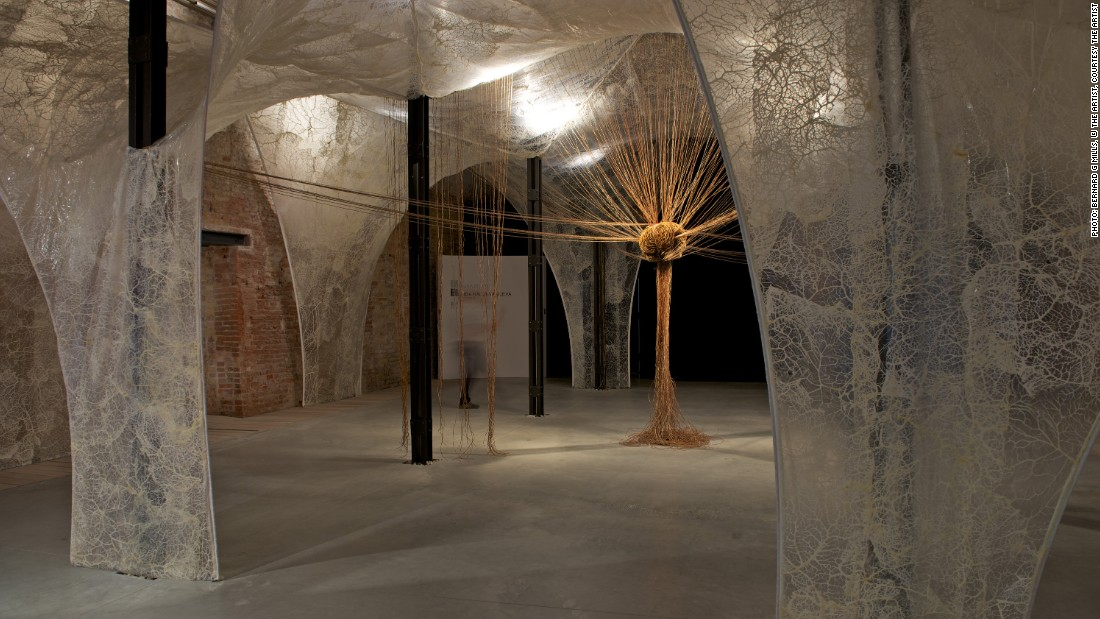 """For her solo exhibition at the Djanogly Gallery in Nottingham, Elpida Hadzi-Vasileva will show """"Haruspex"""" -- a piece commissioned for last year's Venice Biennale -- which responds to the scriptural verse """"In the Beginning... the Word became flesh."""" <br />At the center of the installation is a chalice-like form made from a cow's stomach."""